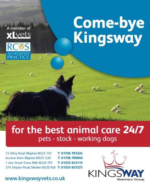 kingsway-come-bye