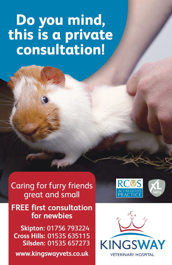 kingsway-consultation